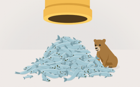 TunnelBear overview: is this VPN worthy of attention? - Post Thumbnail
